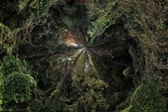 GreenlawnByCloisters_VerticalSlides_POLAR