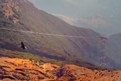 Romania_Mountains_miniPano_RavenMountains_Tram_squished_1600