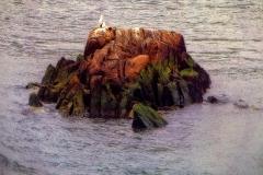 SeagullsOnAROckInEastRiver_warped_1600