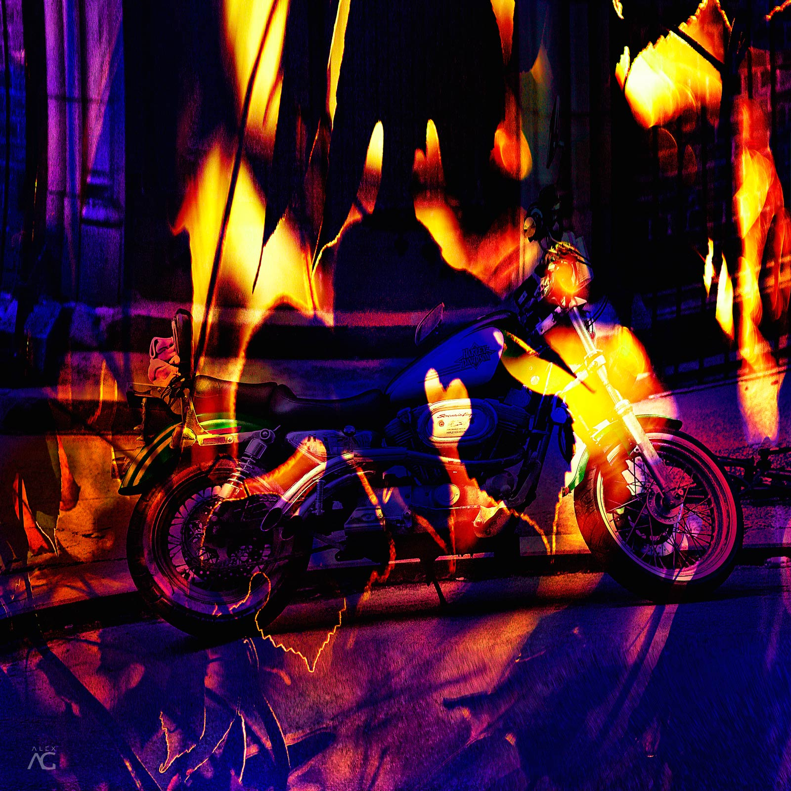 BacklitLeavesInProspectPark_channelMixed_1600_The Autumn Ride