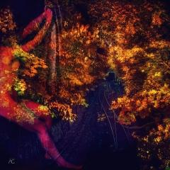 AutumnFoilageAroundTheTrainTracks_ChannelMixed_1600-Preparation for the Season