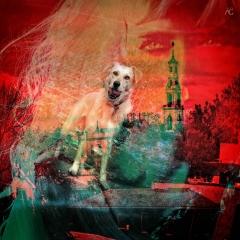 CatholicChurchInBrooklynFromNewUtrecht+DOg_ChannelsMixed