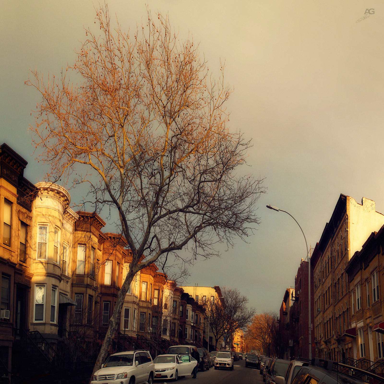 BrooklynSunsetParkAreaStreetTallGoldenHour_squished_1600