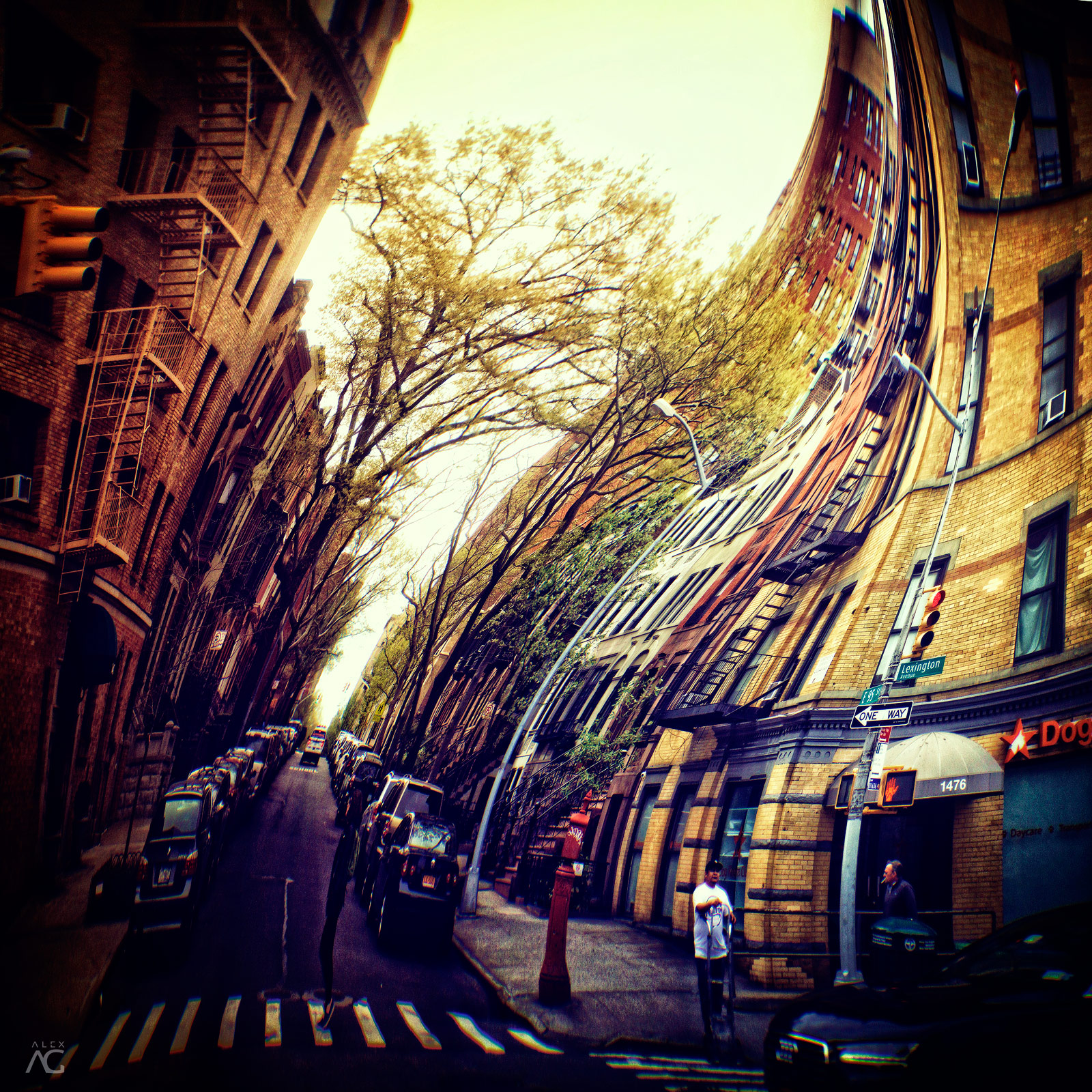 OneDayOnHarlemStreet_ROmanika_warped_1600