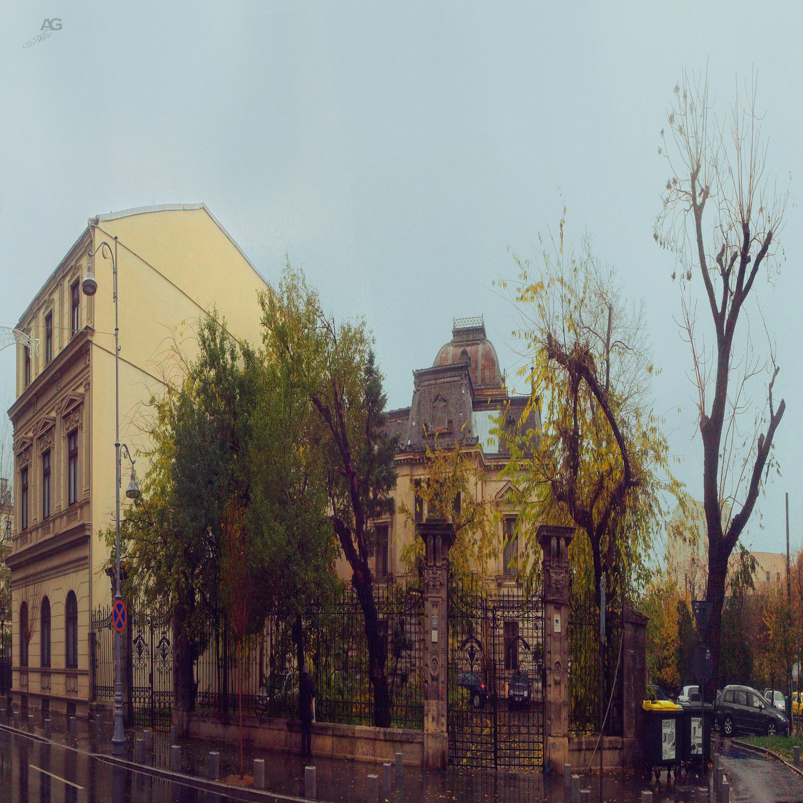 Romania_Bucharest_BuildingAndDryTreeRainyDay_squished_1600