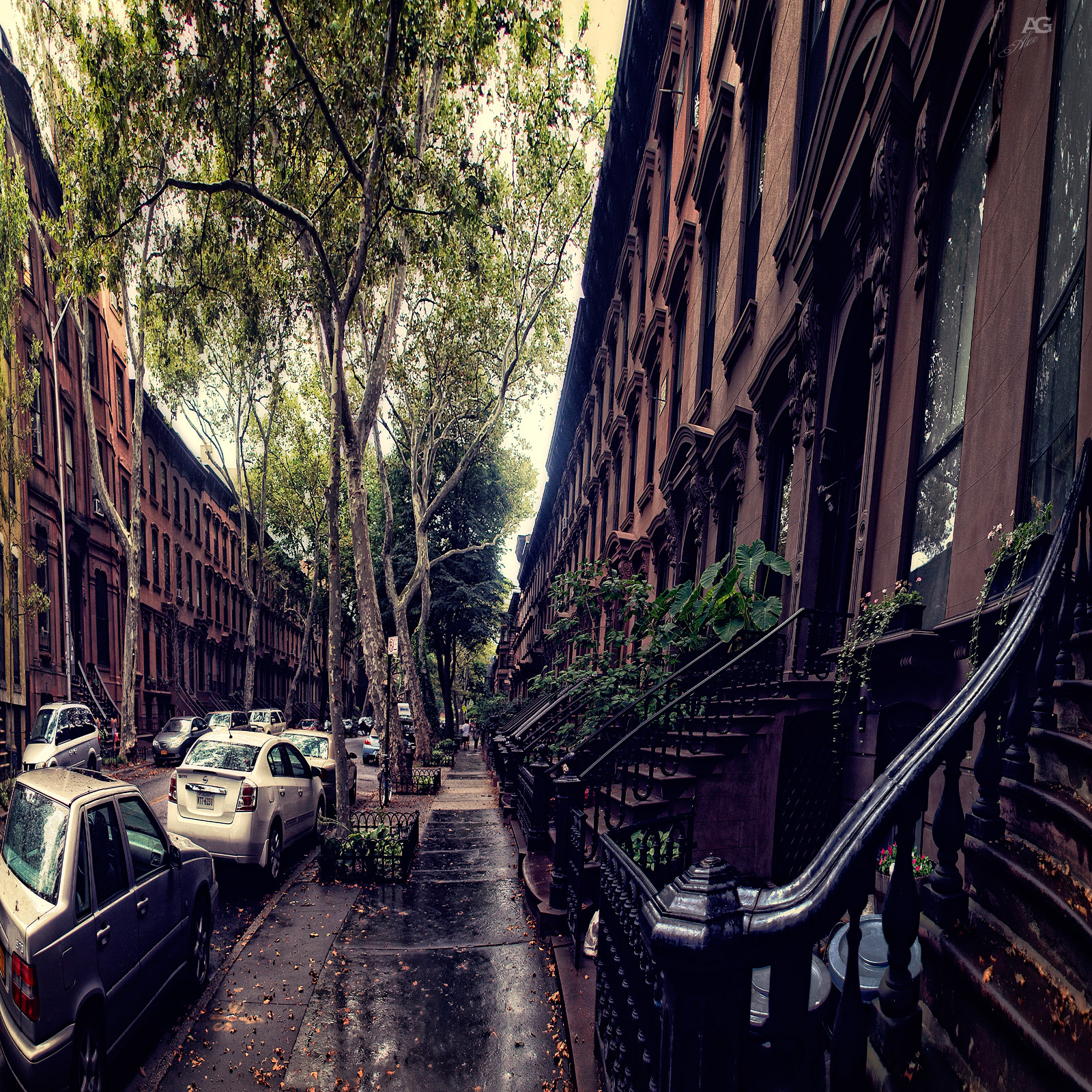 StreetInDowntownBrooklynWithIndenticalBrownstones_warped_1600