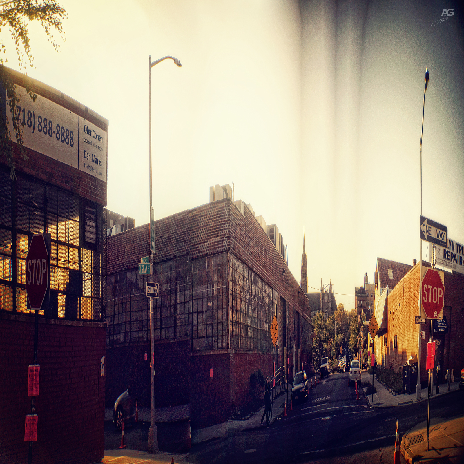 Ungroomed StreetInBrooklynDowntownNearGovanus-warped_1600