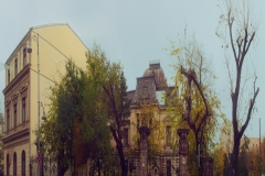 Romania_Bucharest_BuildingAndDryTreeRainyDay_squished_1600