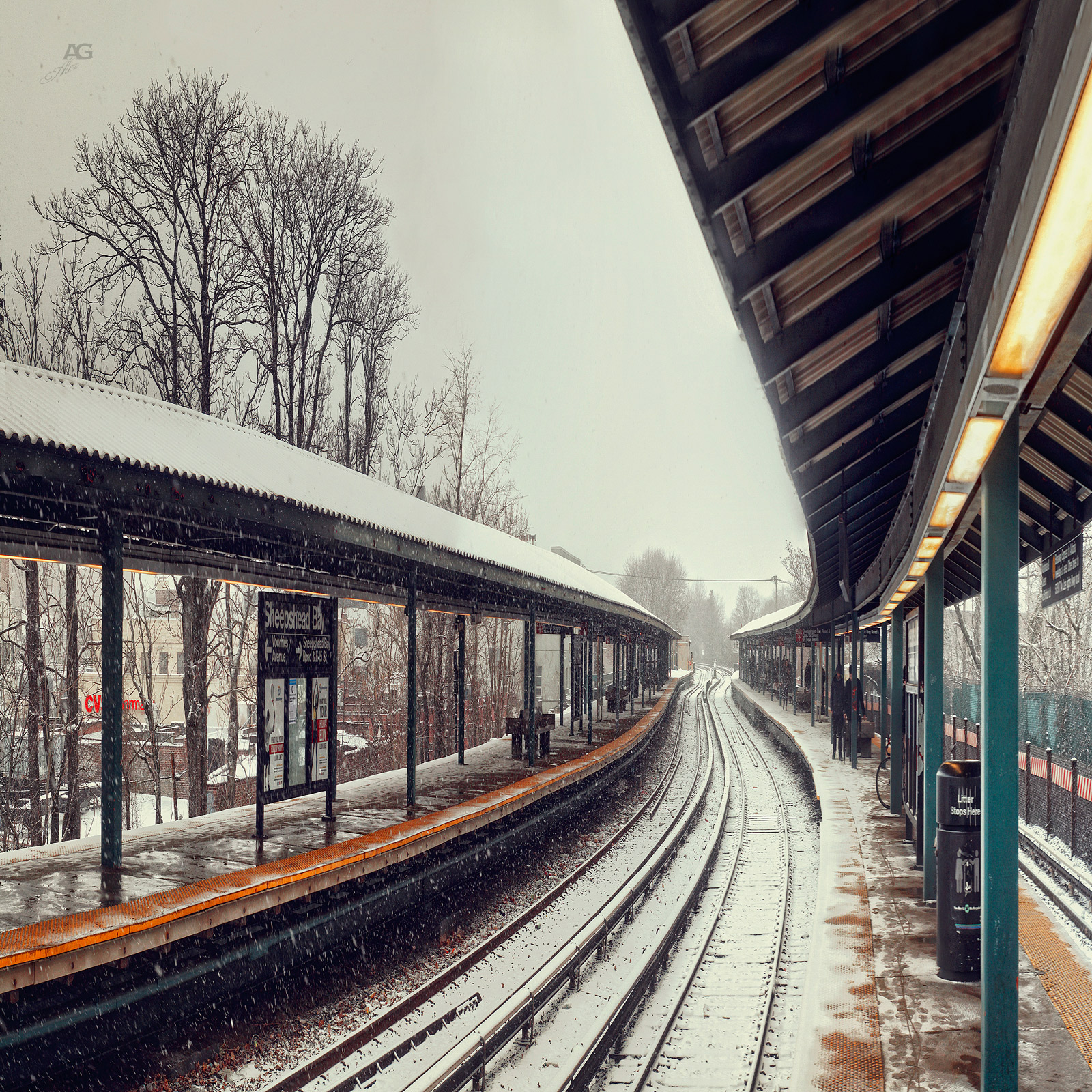 SheepsheadBayTrainSubwayStationSnow_squished_1600