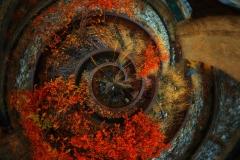 AutumnColorsOnSubwayTrucksHighlaneEvening_POLAR_1600