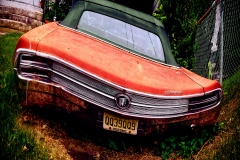 BackOfRedBuickWildCatInTheGrass_warped_1600