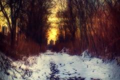 TrailInASnowInAParkNearConeyIslandCreek_Romanika_warped_1600