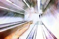 TunnelOfLightOnRooseveltisland_sqished_1600