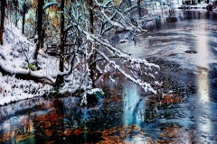 WinterBranchesUnderTheSnowOverWaterInCentralPark_warped_1600